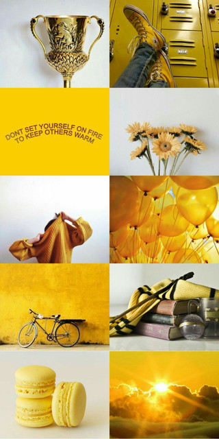28-285066-hunfflepuff-aesthetic-hufflepuff-harry-potter-aesthetic