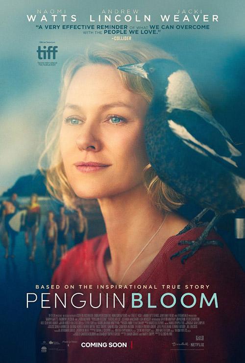 Penguin Bloom | 2021 | m720p - m1080p | WEB-DL | Türkçe Altyazılı | Tek Link