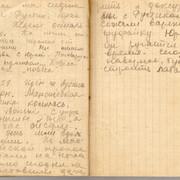 Zina Kolmogorova diary 13