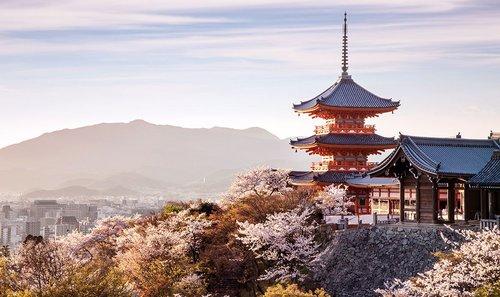 https://i.ibb.co/8N6F16f/Sunset-at-Kiyomizu-dera-Temple-and-cherry-blossom-season-Sakura-on-spring-time-in-Kyoto-Japan.jpg