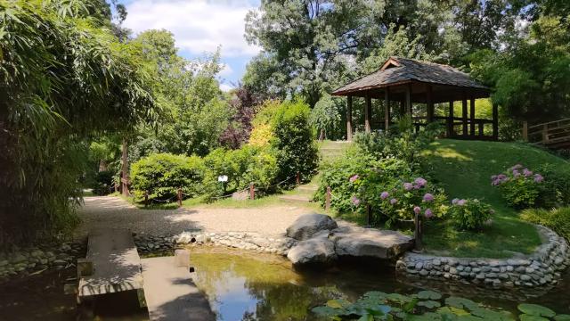 Botanicka-basta-japanski-vrt.png