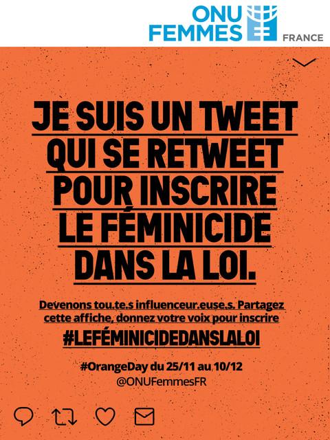 Le Féminicide dans la loi pour ONU Femmes France