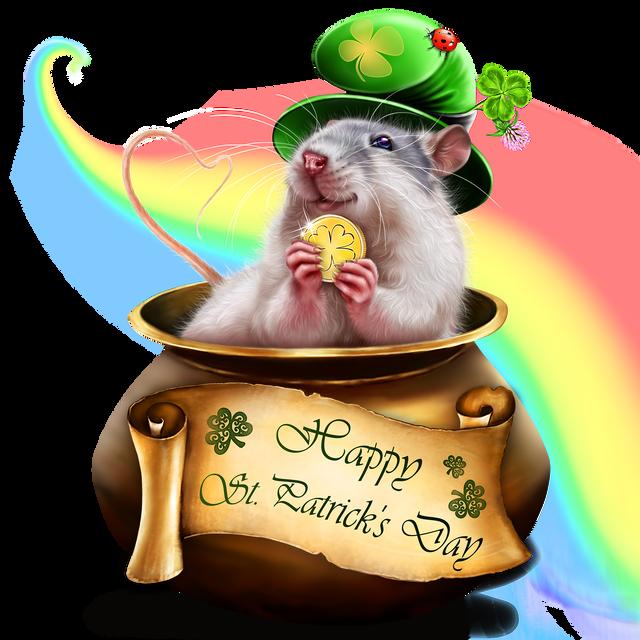 leprechaun-rat-1.png