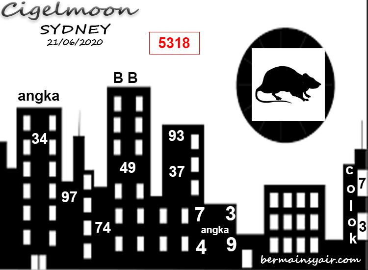 CIGELMOON-SDY