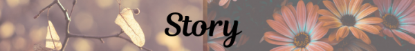 MJ-Banner-Story.png
