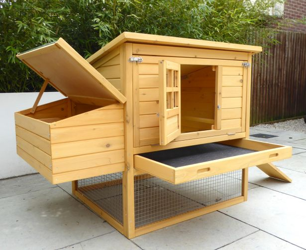 How To Clean And Maintain A Chicken Coop