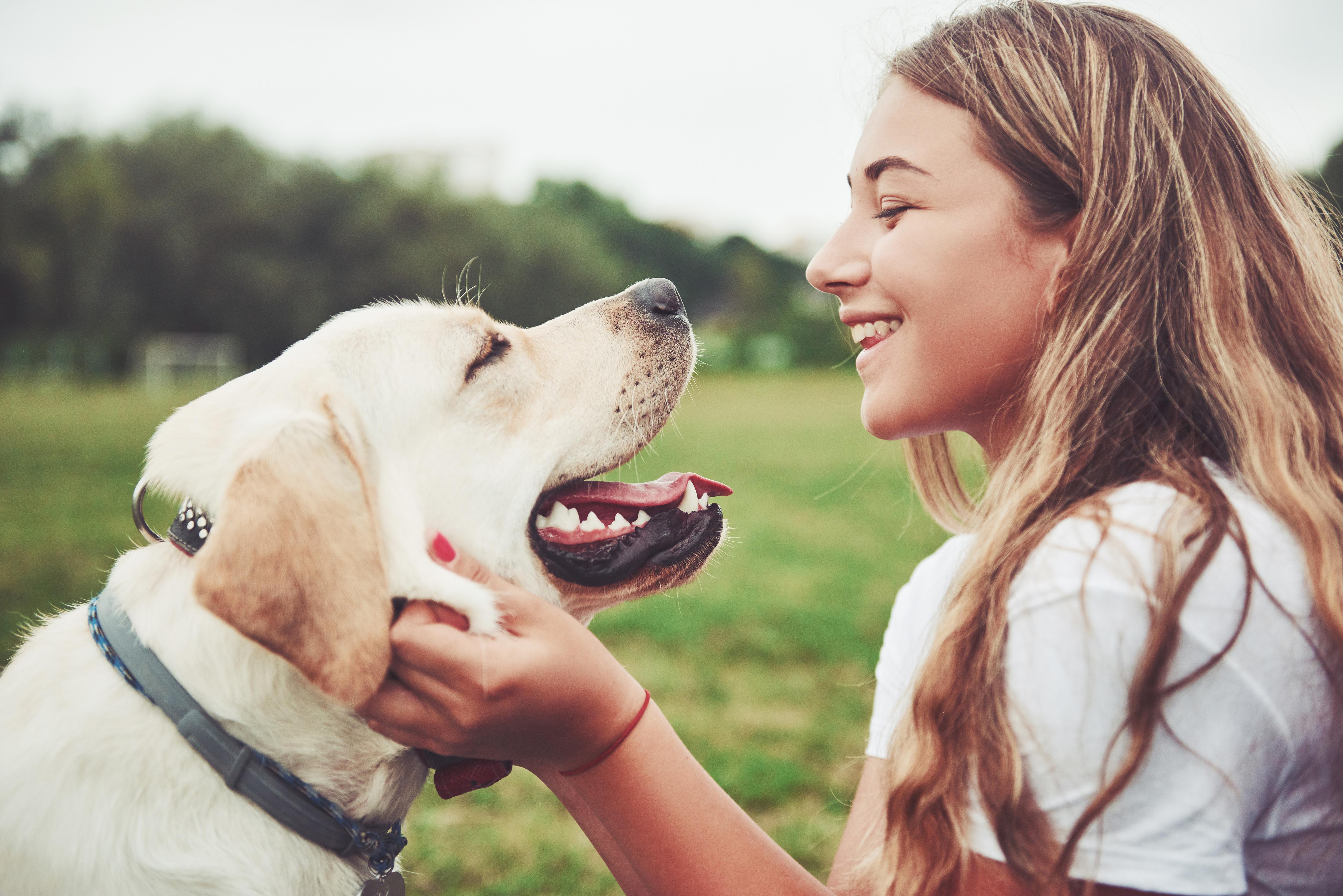 7 Ways To Keep Your Dog Safe Outdoors