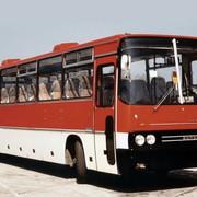 Ikarus-250-59-1