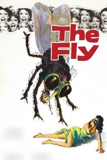 Mucha / The Fly (1958) PL.BRRip.XviD-GR4PE | Lektor PL