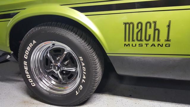 Mustang2019-7