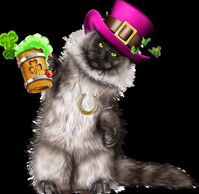 Leprechaun-Cat-With-Beer-55.png
