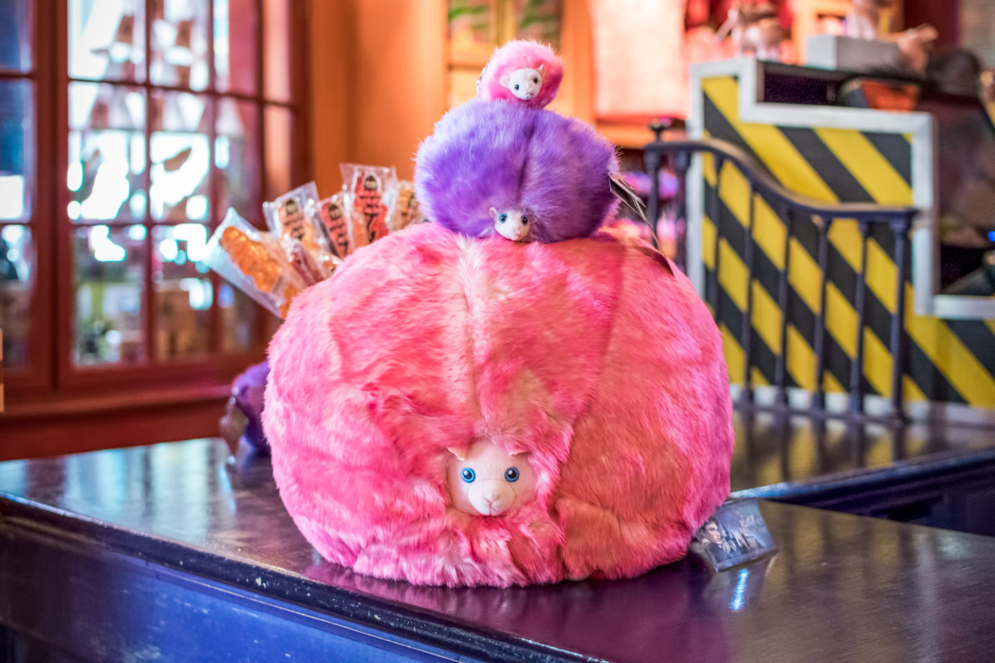 Pygmy Puff at the Wizarding World of Harry Potter