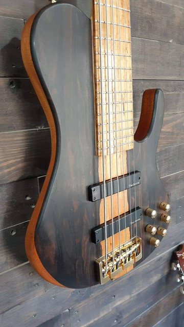 Limpeza e conservação do instrumento - Página 3 FB-IMG-1602010002946