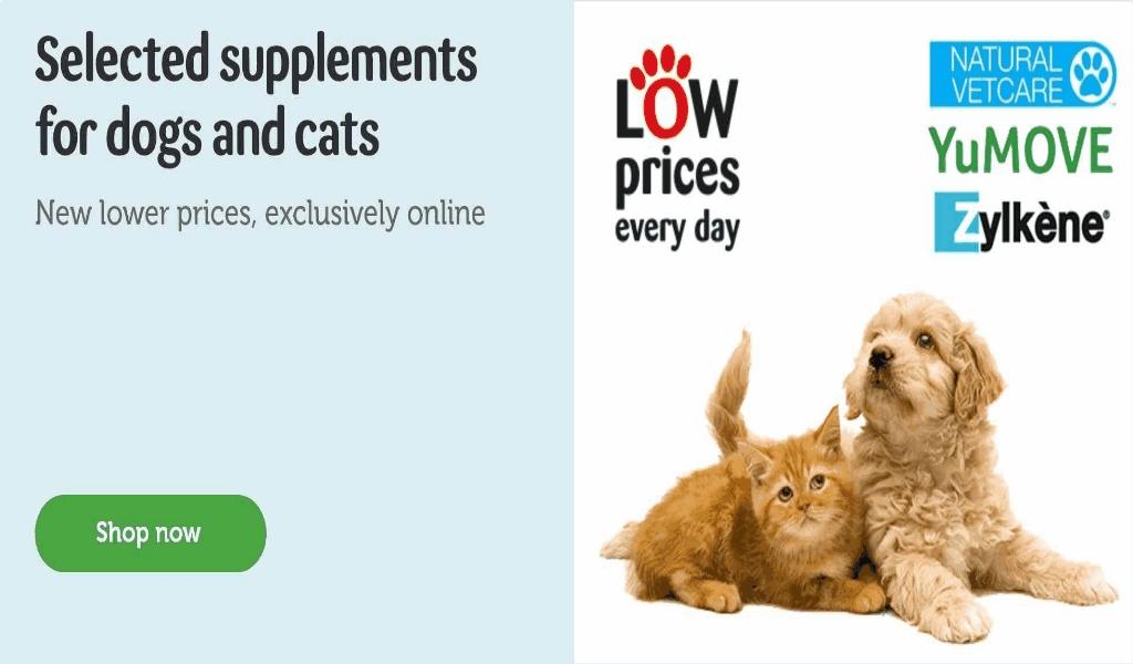 Online Odd stuff Pets Store