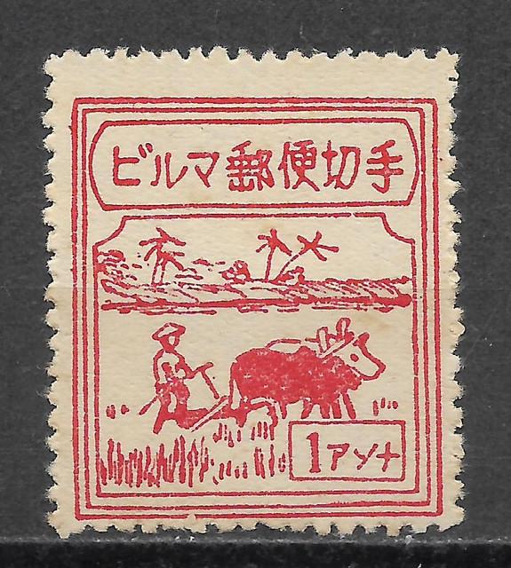 Burma J48