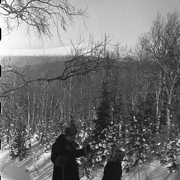 Dyatlov pass 1959 search 53