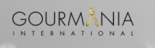 شركة جورمانيا الدولية