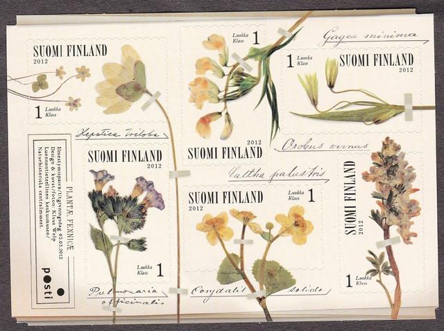 2016 Suomi Flowers