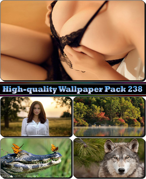 High-quality Wallpaper Pack 238