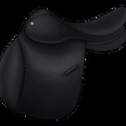 Esatula musta4