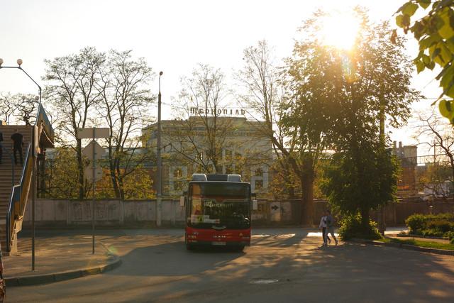IMG-8548.jpg