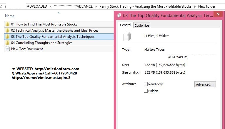 Penny Stock Trading - Analyzing the Most Profitable Stocks (Enjoy Free BONUS Day-Trader's Fast Fibonacci Class)