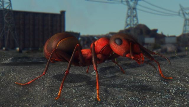 Fallout Screenshots XIV - Page 23 20200728091939-1