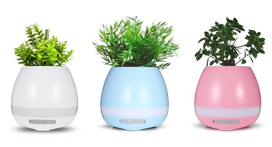 Гаджет для ухода за домашними цветами - Smart Flower