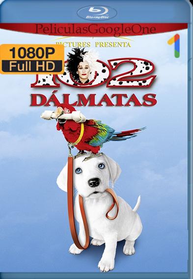 102 dálmatas (2000) HD [1080p] Latino [GoogleDrive] | Omar |