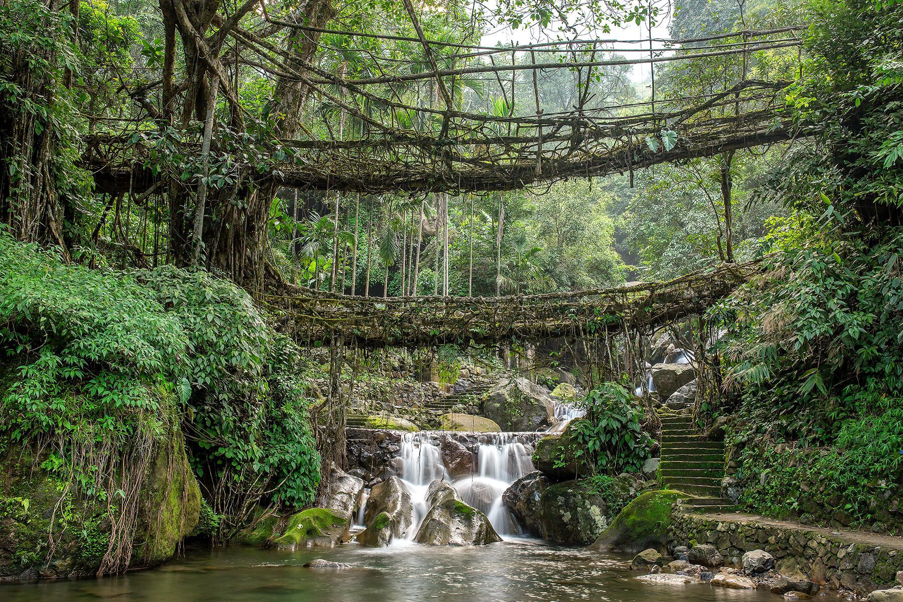 01-India-Adventures-In-Meghalaya-Crossing-ADouble-Decker-Living-Root-Bridge-1-shutterstock-106940883