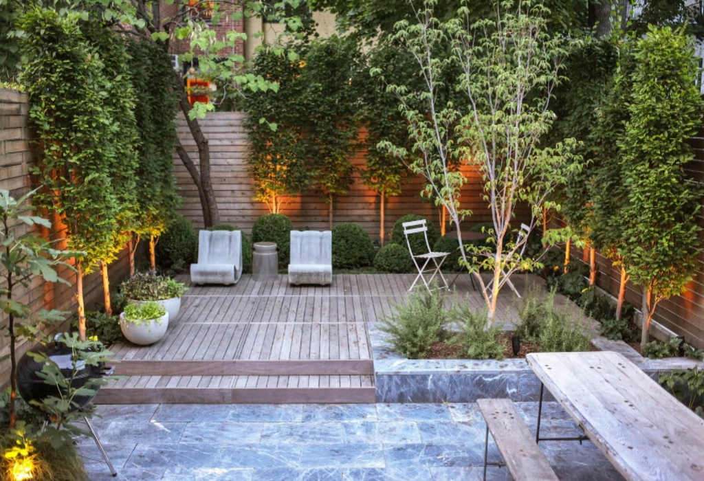 Luxury Beautiful Plants Gardening