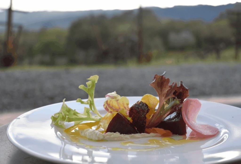 Modern Gastro Bar Culinary