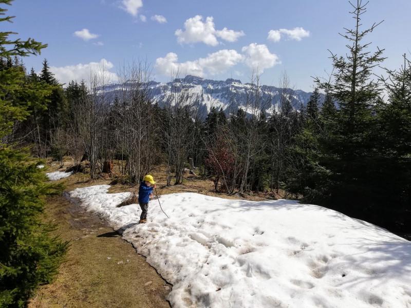 Snow poking