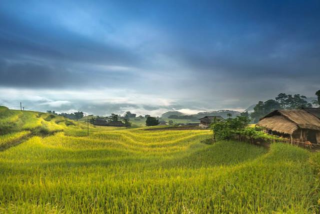 Al-Quran dan pertanian