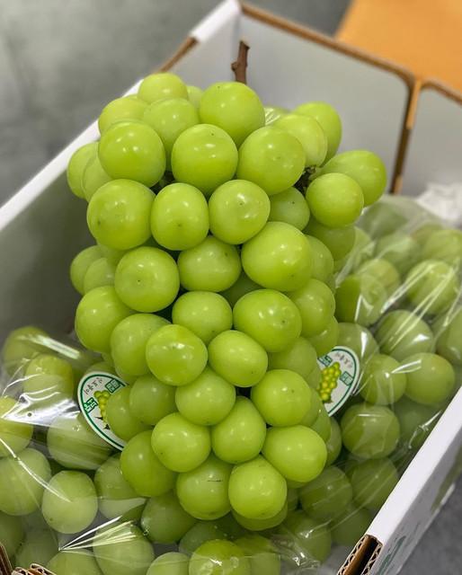 fruit-dani-1186014667017706770746377701042585517945350n
