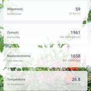 Screenshot-20200808-150642-Veg-Trug-Grow