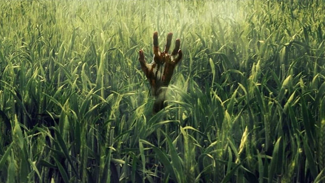 cropped-in-the-tall-grass-banner-1068x601