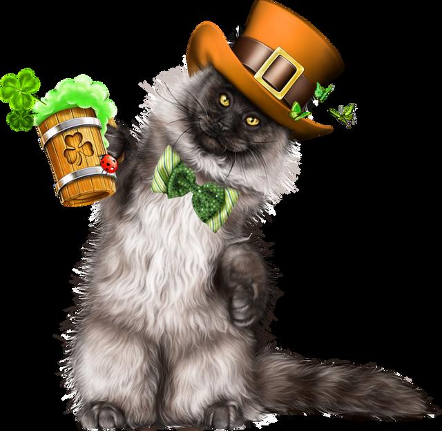 Leprechaun-Cat-With-Beer-35.png