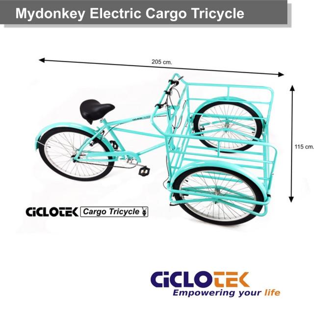 triciclo-electrico-mydonkey-4.jpg