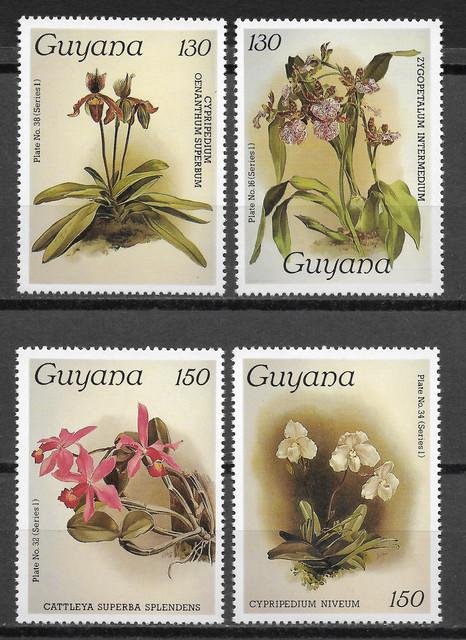 O Guyana 1422