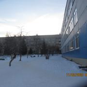 IMG-6892