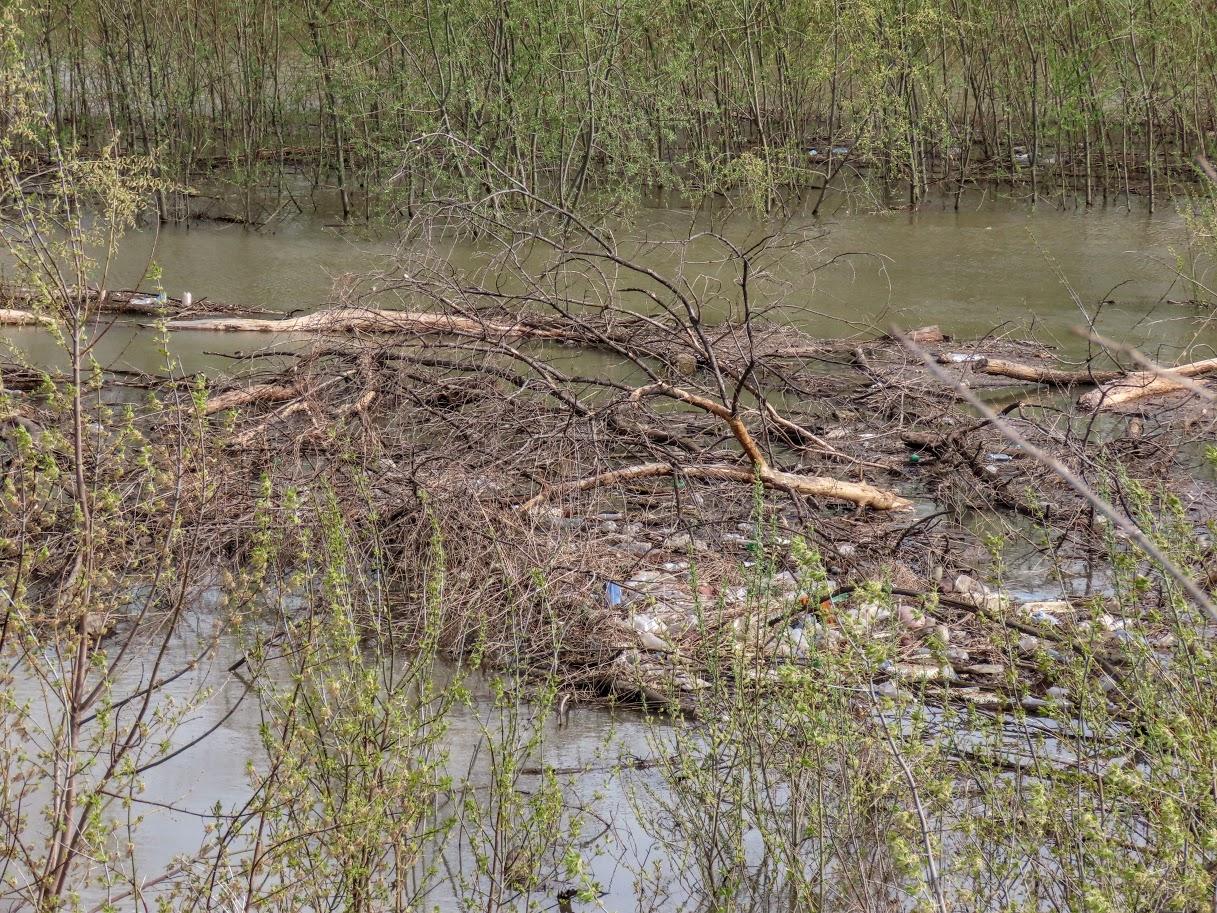 Уровень воды в Томи снова повысился IMG-7763