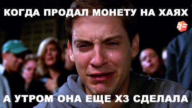 meme-bitfin.png