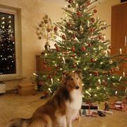 Una20-12-25-Weihnachten
