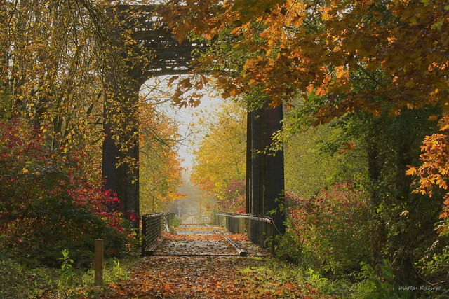 Gateway-to-Autumn-sm.jpg