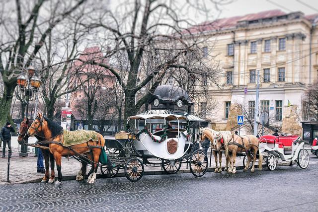 horse drawn carriages.jpg