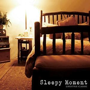 Compilations incluant des chansons de Libera Sleepy-Moment-300