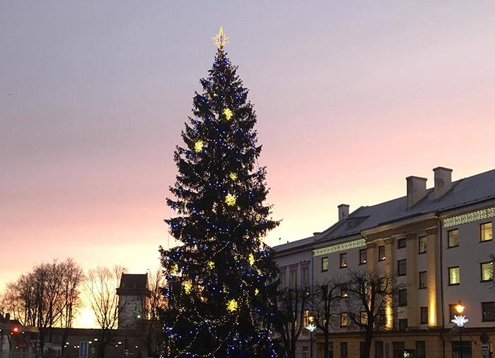 Огни новогодней елки в Нарве зажгутся 29 ноября
