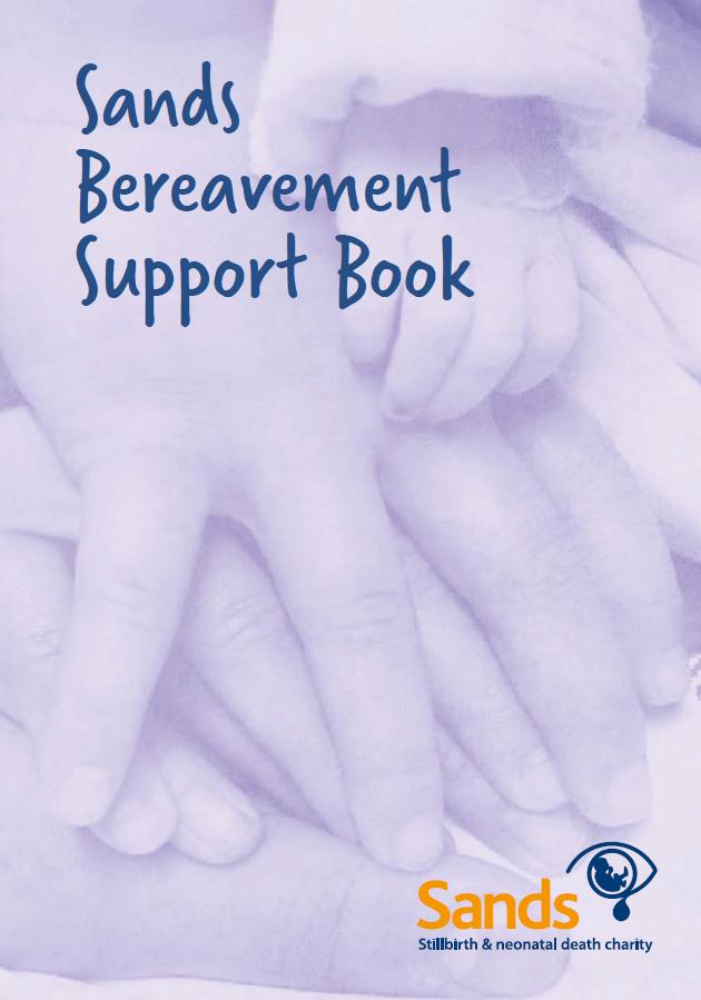 BSS-book-website-image