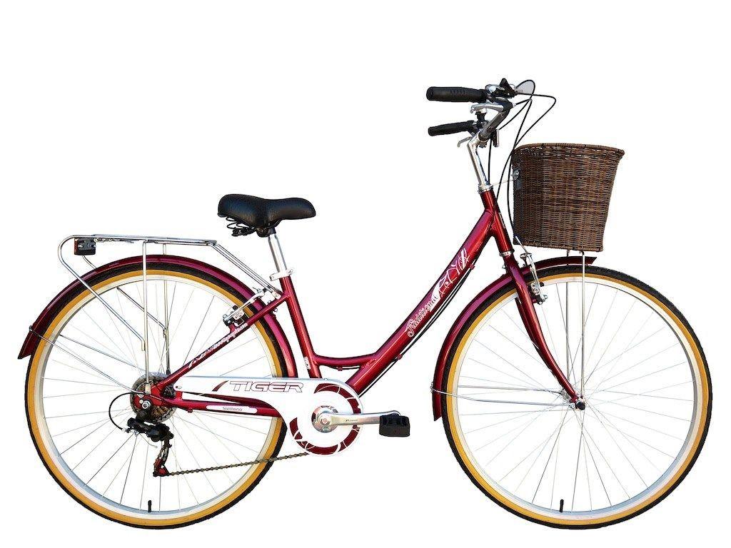 electric bike taiwan